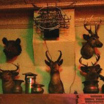 Big Dick's Antlers