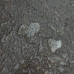 Melting Ice Hearts
